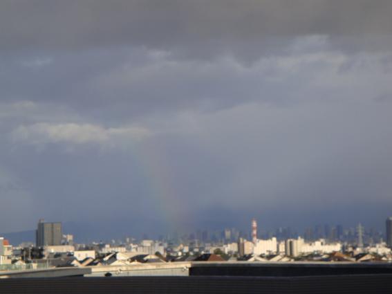 DSC05367虹.jpg